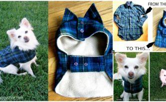 diy4ever- DIY Pet Coat Pattern & Tutorial