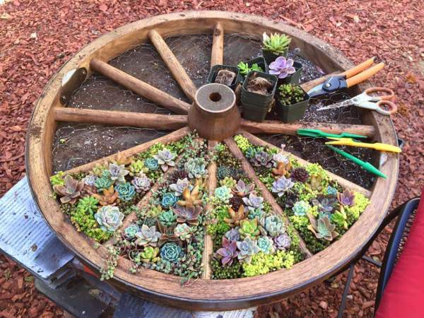 10 Most Beautiful DIY Garden Planter Ideas1