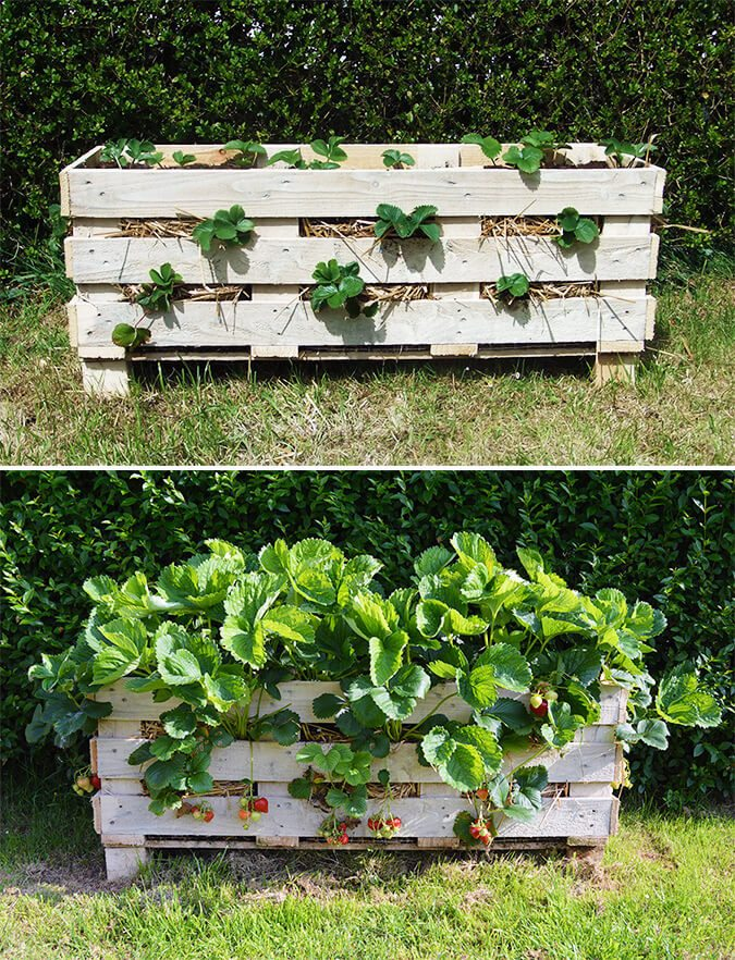 10 Best DIY Pallet Planter Ideas & Tutorials3