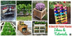 10 Best DIY Pallet Planter Ideas & Tutorials