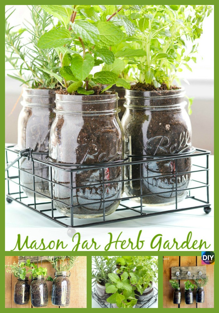 diy4ever-Mason Jar DIY Herb Garden Tutorial