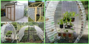 diy4ever-Recycled DIY Plastic Bottle Greenhouse