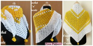 diy4ever- Beautiful Crochet Granny Shawl - Free Pattern