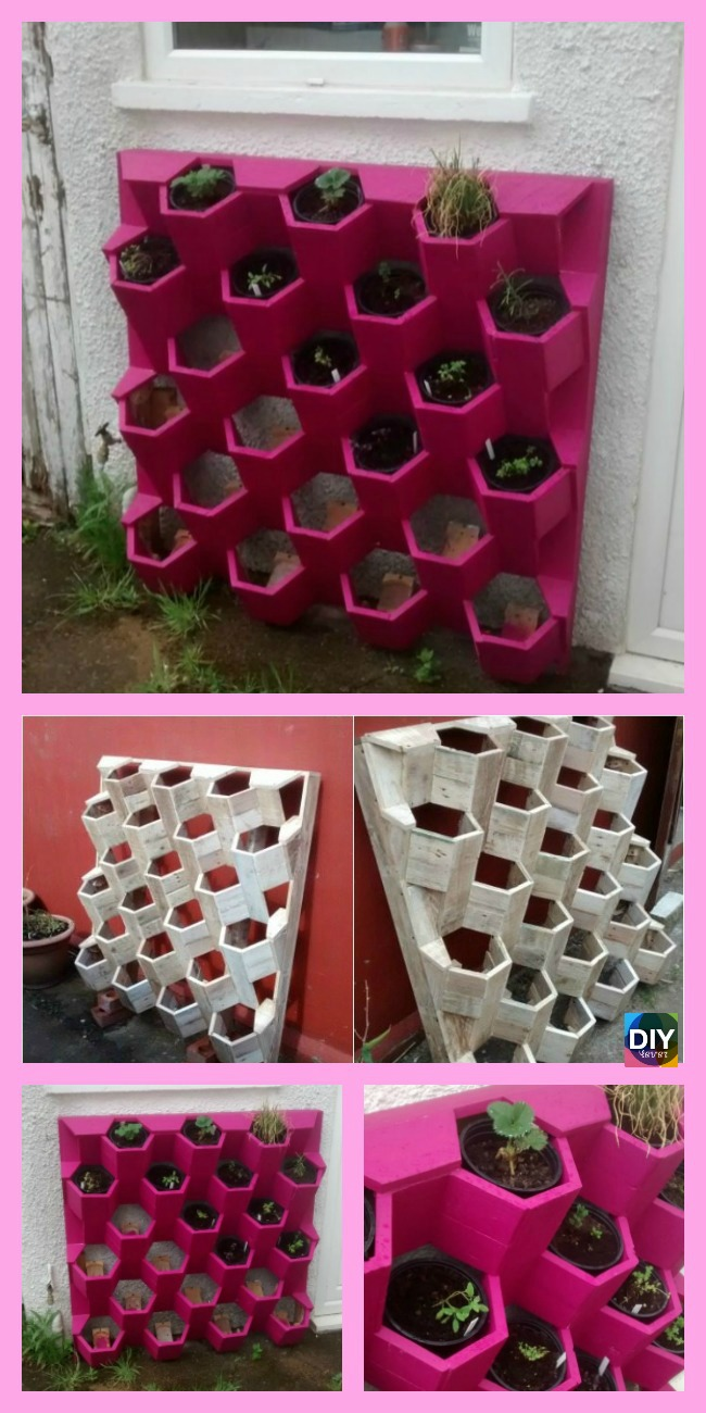 diy4ever- DIY Ceative Herb Hive - Step by Step Tutorial