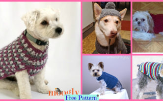 diy4ever-Crocheted Dog Sweater - Free Patterns