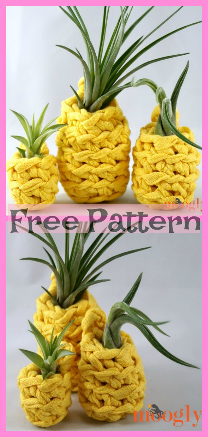 diy4ever-Crochet Pineapple Plant Hangers - Free Pattern